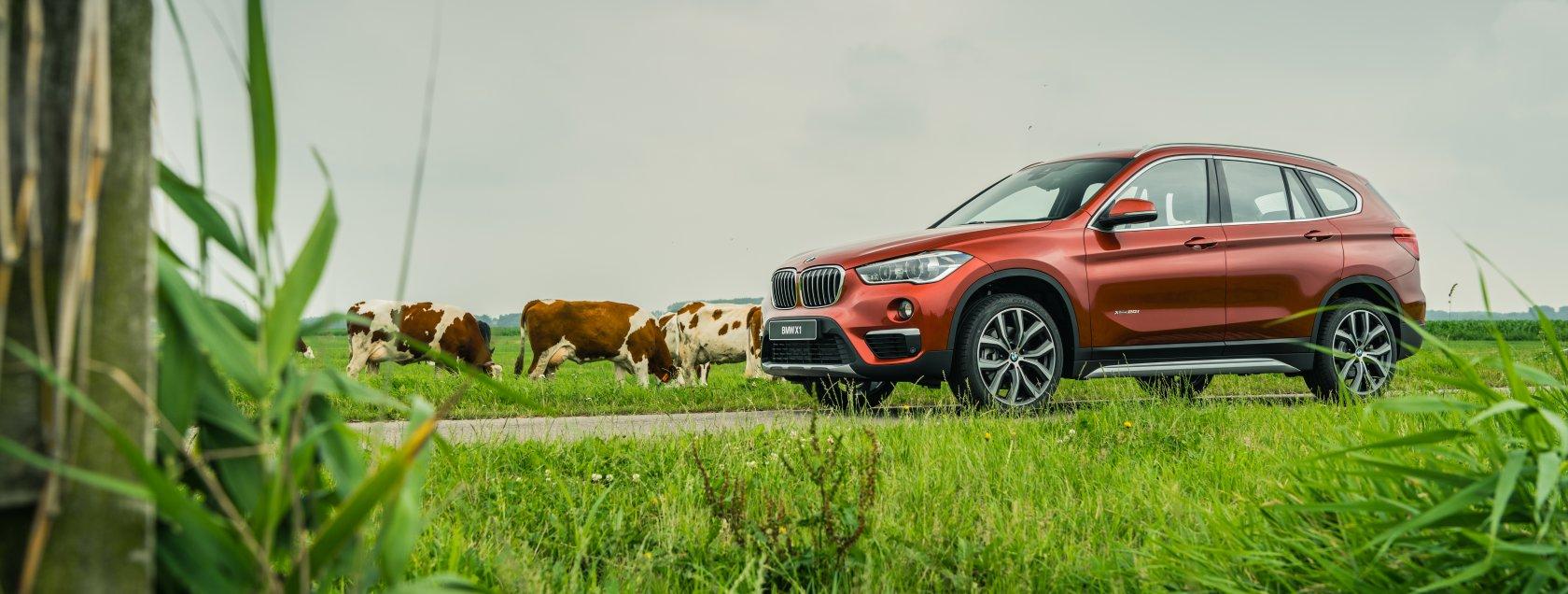 BMW X1 Orange Edition.